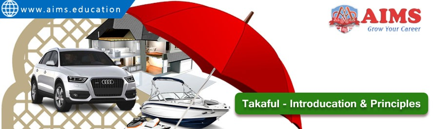takaful meaning